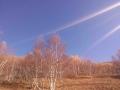 坝上草原秋季景色