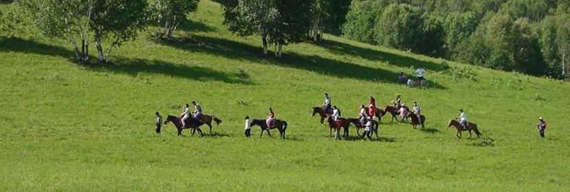 坝上草原-骑马